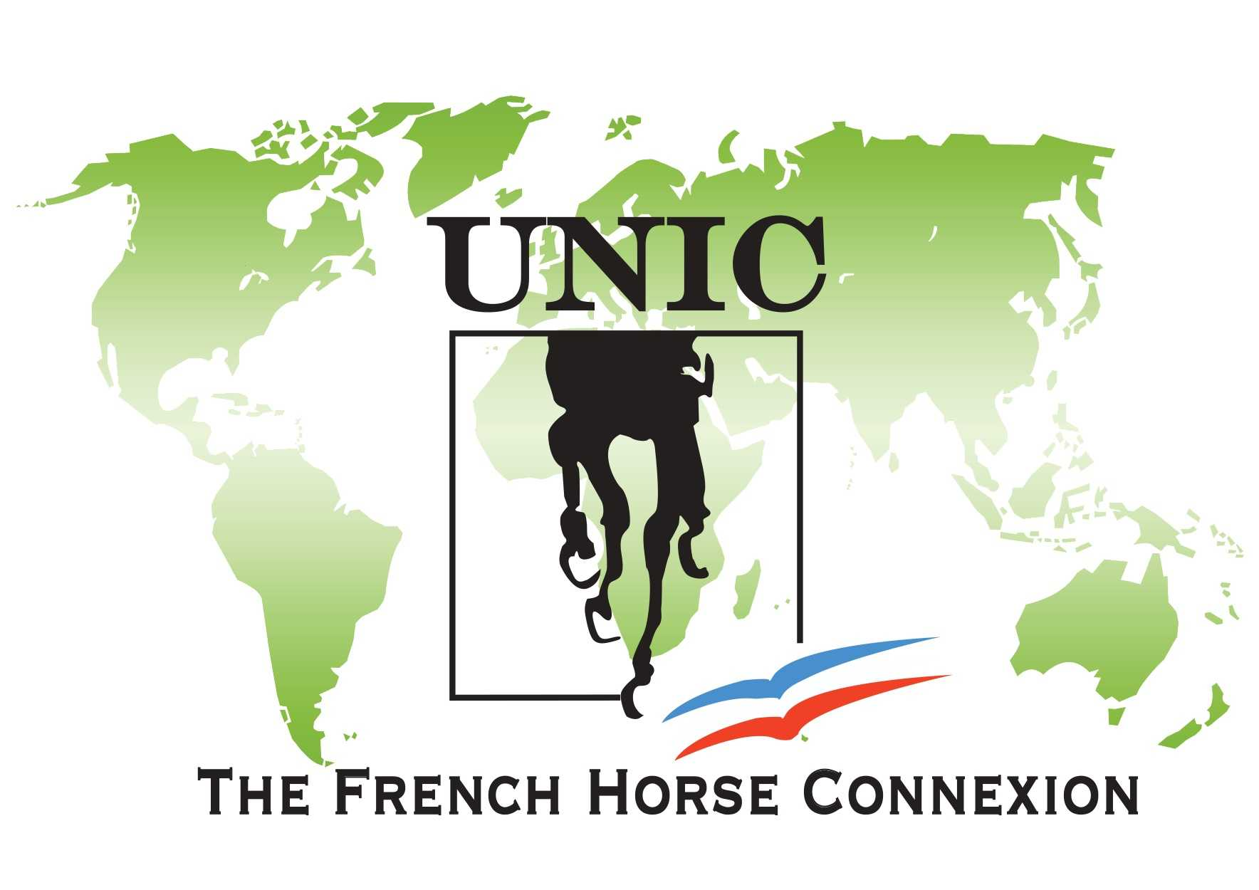 Union Nationale Interprofessionnelle du Cheval