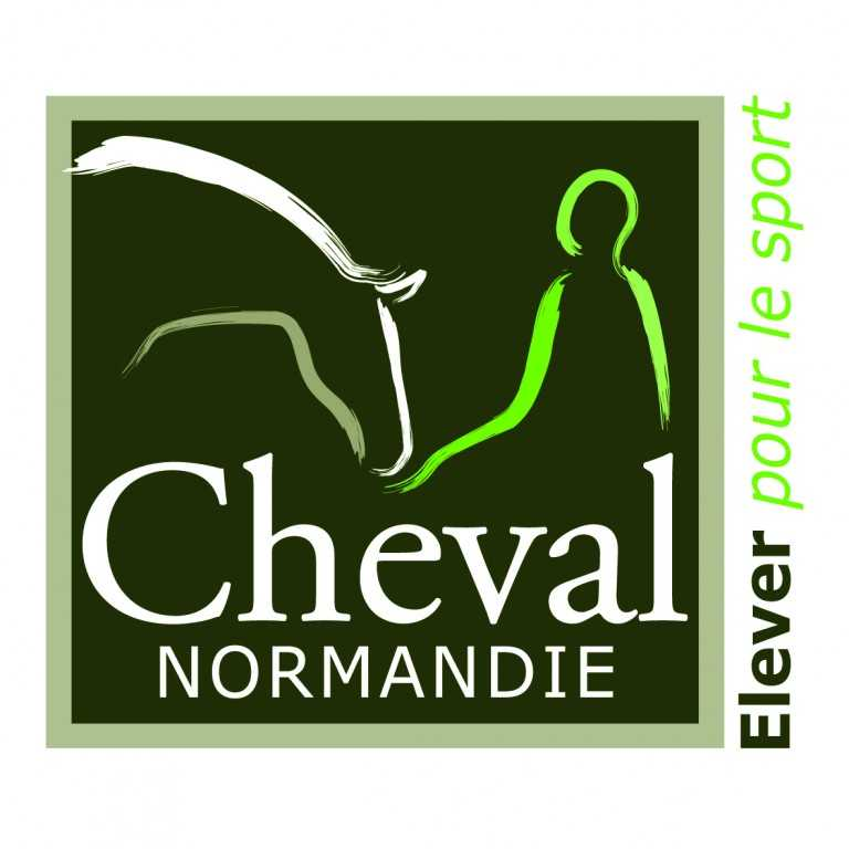 Cheval normandie